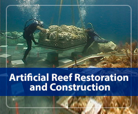 Artificial Reef Restoration and Construction